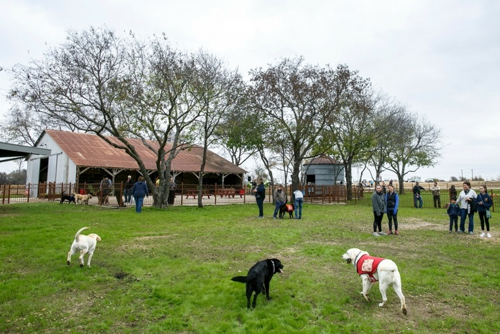 Hay Barn and Pooch Park.jpg