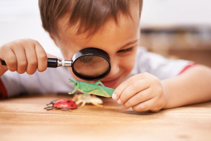 Boy looking at pretend bugs through magnifying glass
